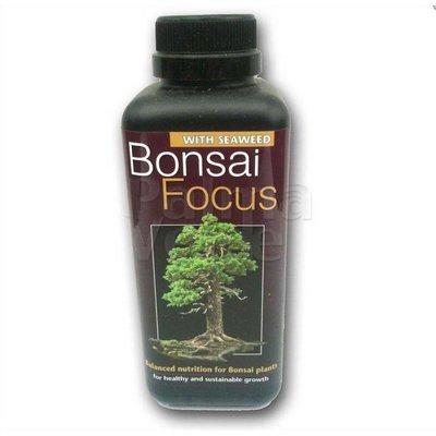 Produkten-products Bonsai Focus