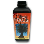 Produkten-products Olive Focus