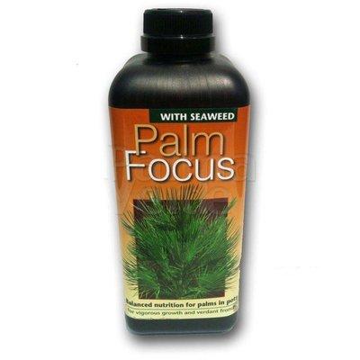 Produkten-products Palm Focus