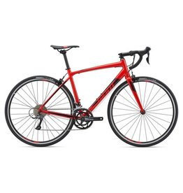Giant giant contend 2 2019 Red S
