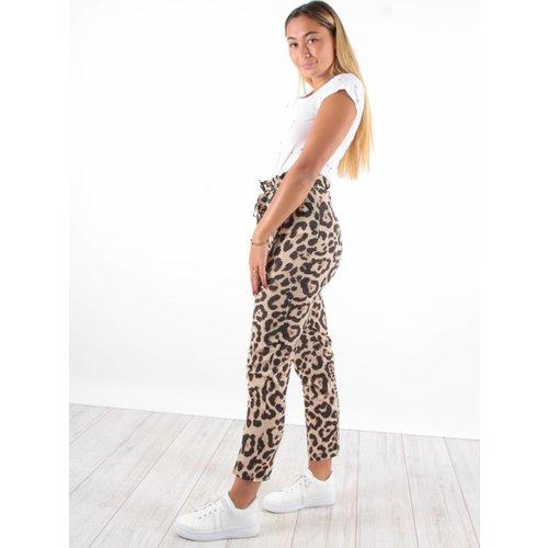 Ladylike Pants leopard