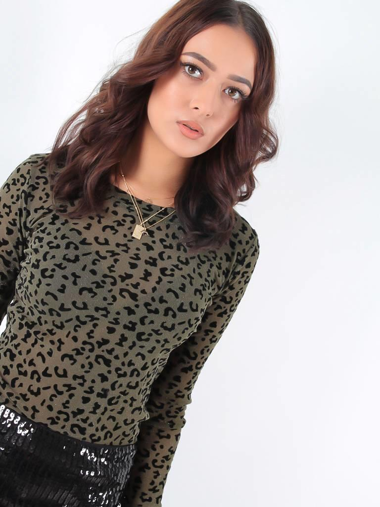 May Leopard see through