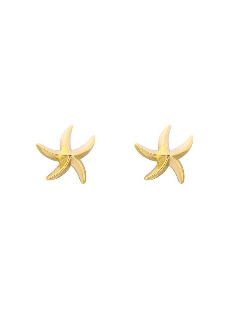 Yehwang Earrings star of the sea