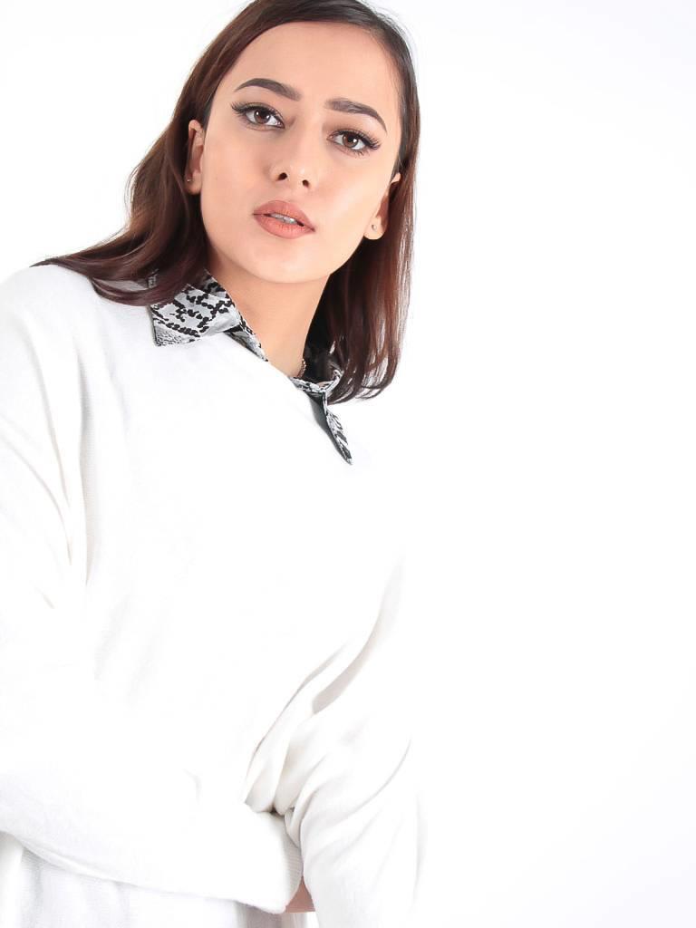 Ladylike Collar snake grey