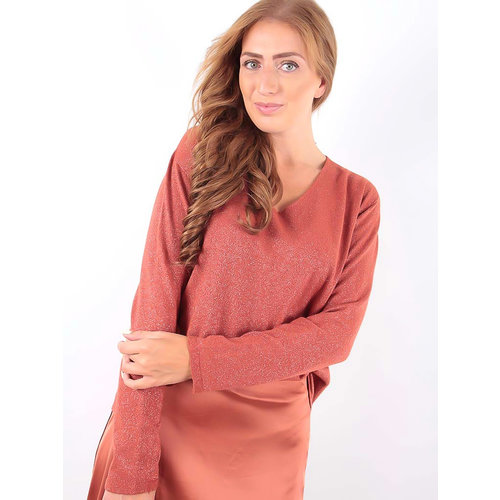 LADYLIKE FASHION Glitter Jumper V-Neck Brown