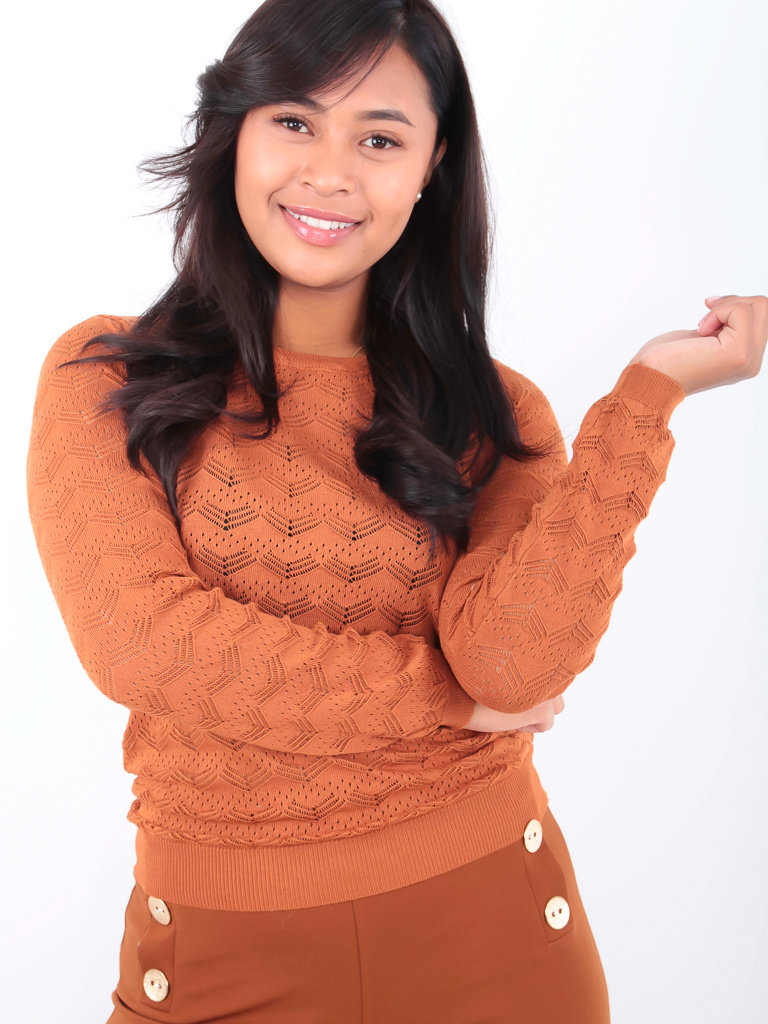 BY CLARA - LADYLIKE FASHION Lace Knitted Jumper Camel
