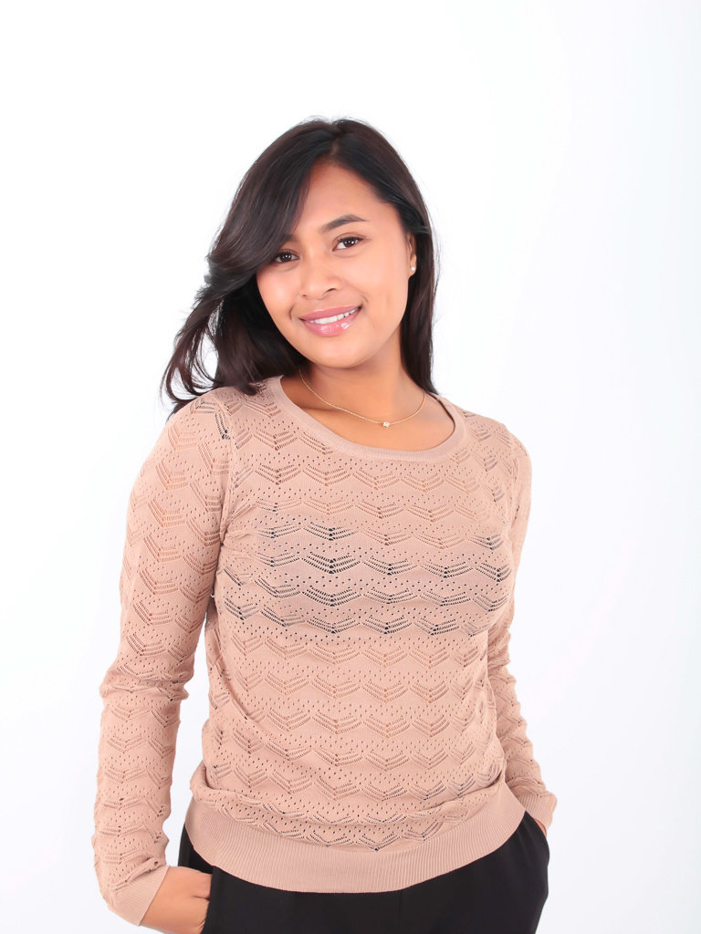 BY CLARA - LADYLIKE FASHION Lace Knitted Jumper Beige