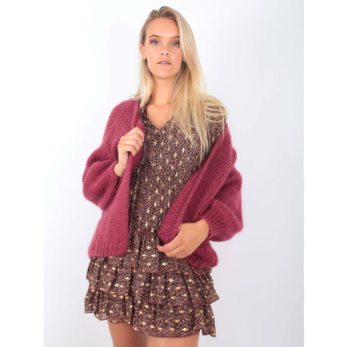 ALEXANDRE LAURENT Knitted Cardigan Berry