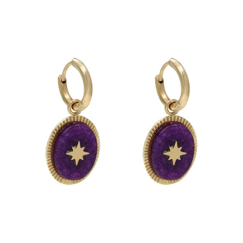 LADYLIKE FASHION Earrings Stoned Purple