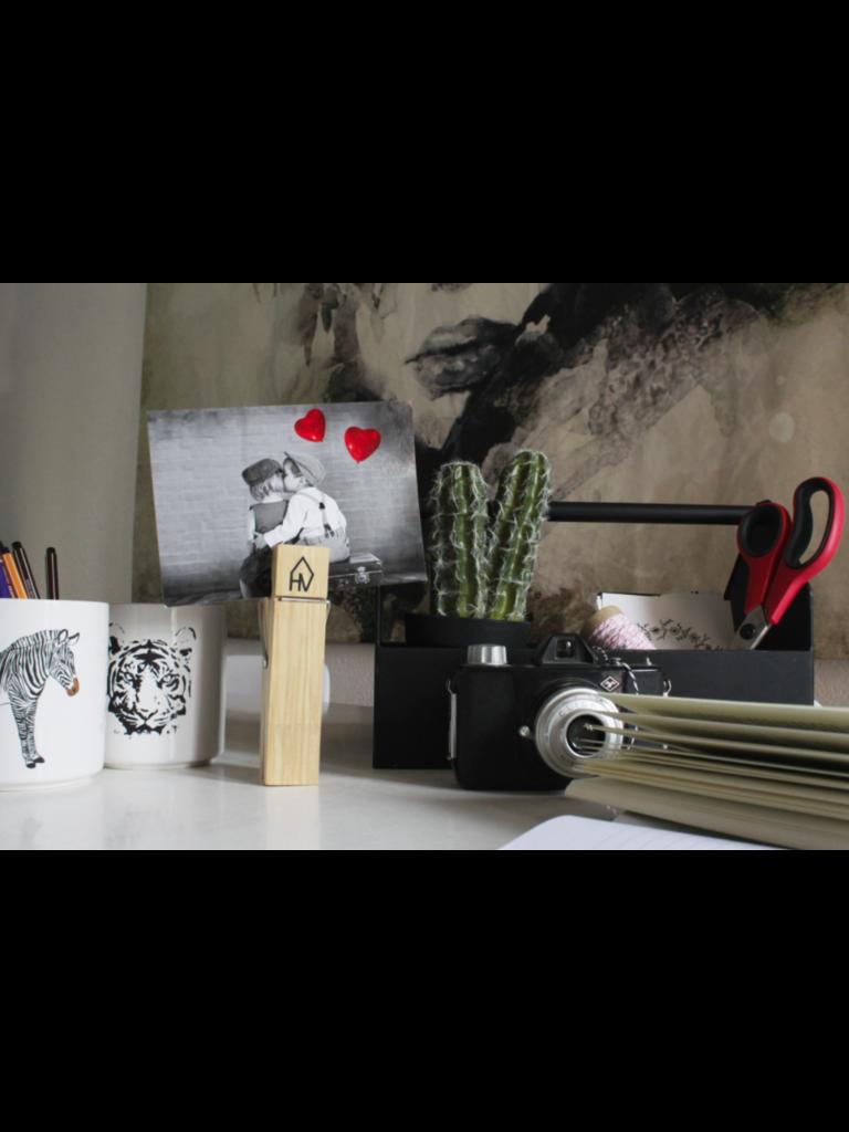 HOUSE VITAMIN Ceramic Flower Pot Tiger