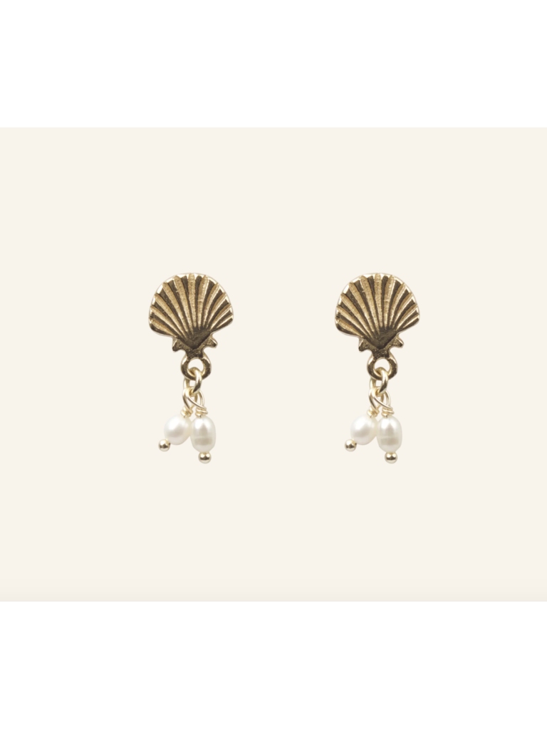 Shell With Freshwater Pearls Earrings