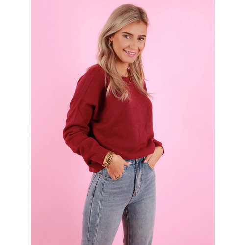 ALEXANDRE LAURENT Viscose Jumper Bordeaux