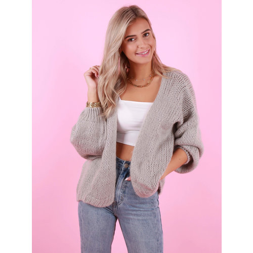 MIKA ELLES Knitted Cardigan Light Grey