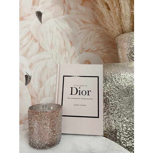Ladylike  Fashion Little Book Of Dior