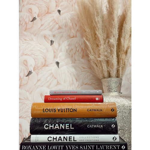 Ladylike  Fashion Dreaming of Chanel book