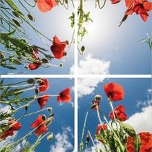 Fotoprint afbeelding Wolken en Roos 120x120cm voor 4x 60x60cm led paneel