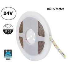 Led Strip ROL 5 Meter 5050SMD, 13,6w/m, 60 led/m, 1320Lm/m, 6000K Daglicht Wit, 24v, IP65, 10mm, 2 Jaar garantie