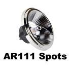 AR111 Led Spots