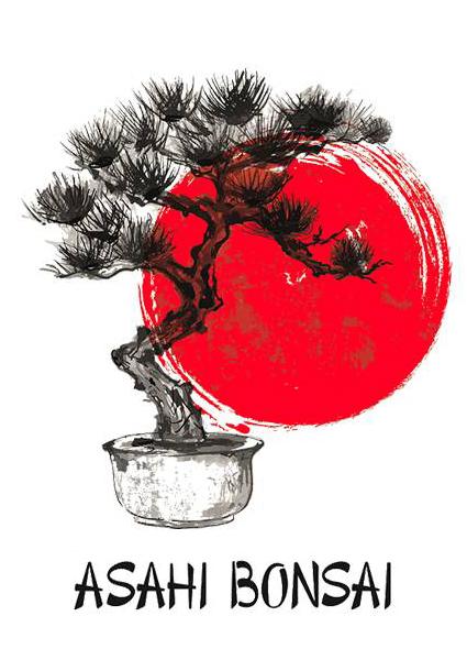 Asahi Bonsai