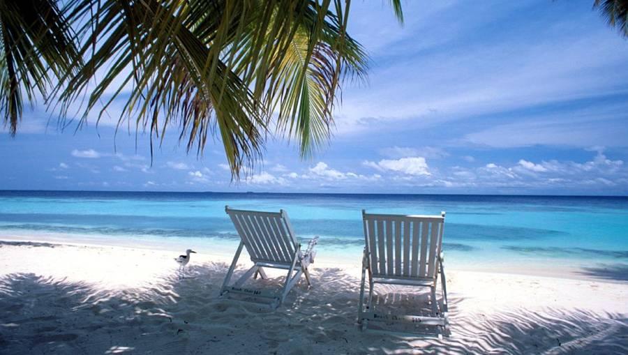 Drukte op het werk geen reden om vakantie uit te stellen [Onderzoek]