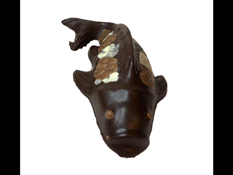 Koi vis klein