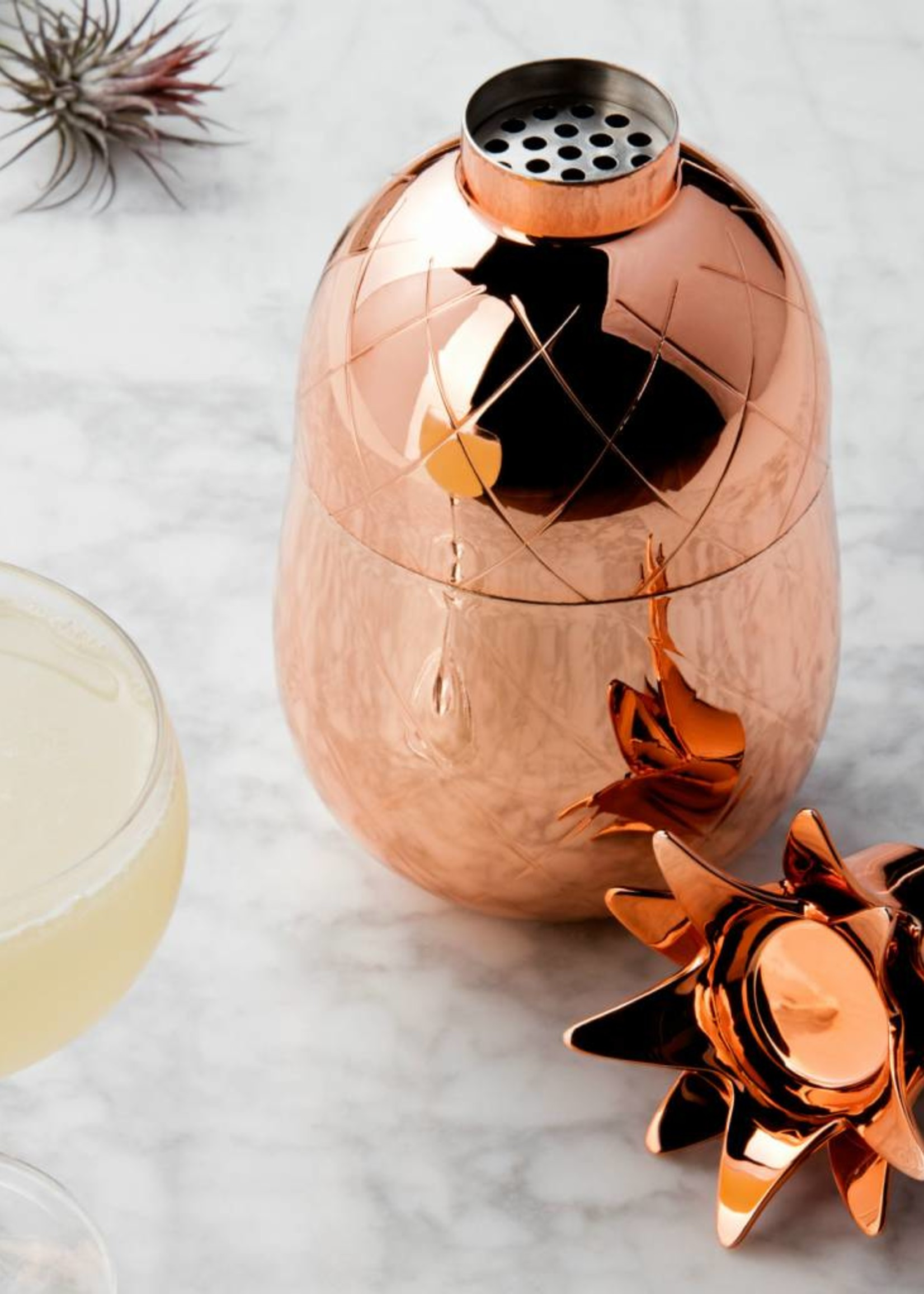 W&P Pineapple Cocktail Shaker