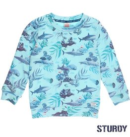 Sturdy Sturdy 716.00326 Shirt Mint  Z19 J