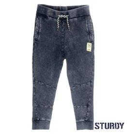 Sturdy Sturdy 722.00113  Broek  Grey  Z19 J