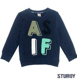 Sturdy Sturdy 716.00337 sweater blauw W9B