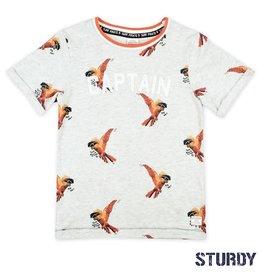 Sturdy Sturdy 717.00261 T-shirt grijs S20B