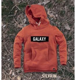 Z8 Z8 Silvain hooded sweater burnt brick