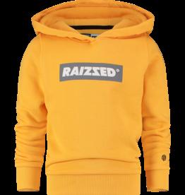 Raizzed Raizzed New York trui Mustard Yellow W20B