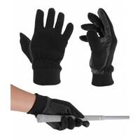 Legend Men's winter glove