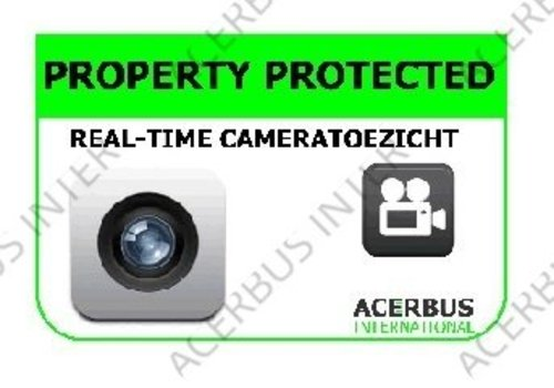 Sticker Camera bewaking groot (normaal)