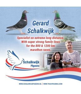 Travipharma Pigeon brochure 2020