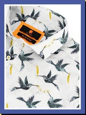 BB Chum BB Chum - Blue Birds