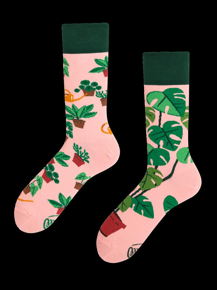 Many Mornings Plant Lover socks 39-42