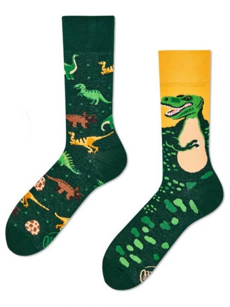 Many Mornings Dinsaurs socks 43-46