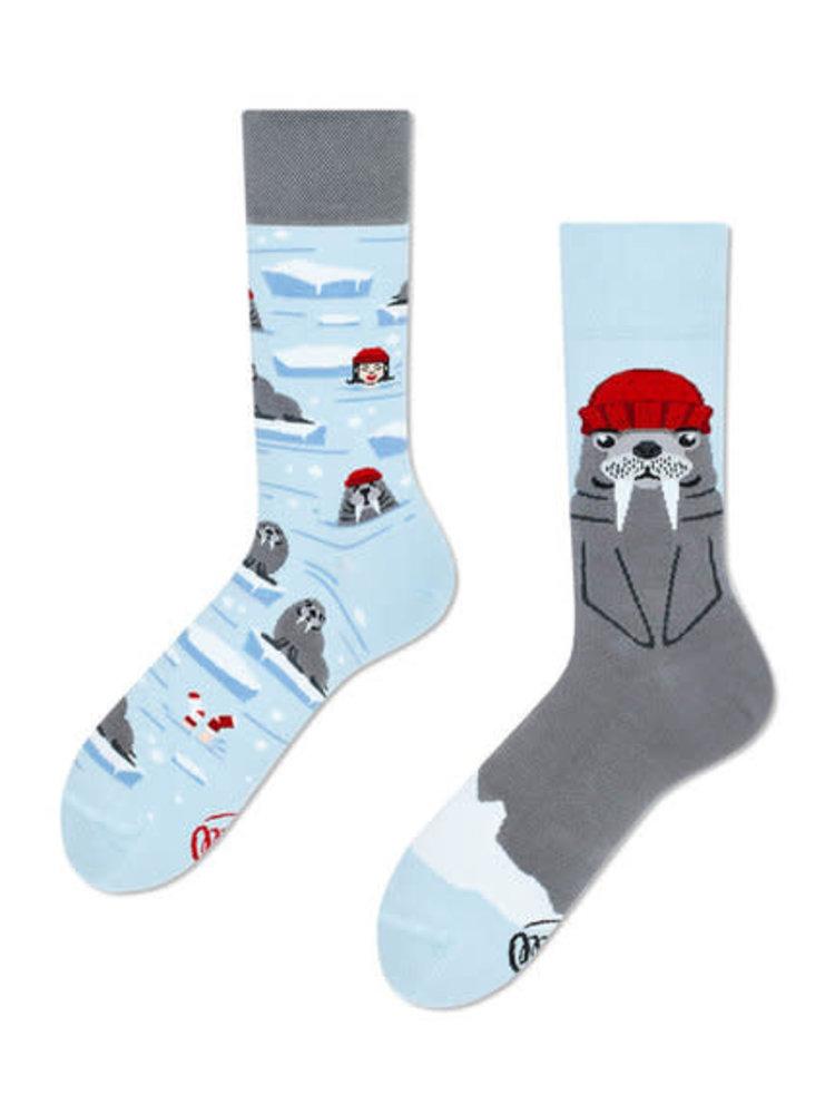 Many Mornings Walrus Socks 43-46