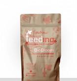 Greenhouse Feeding Greenhouse Powder-Feeding BioBloom  Blütedünger