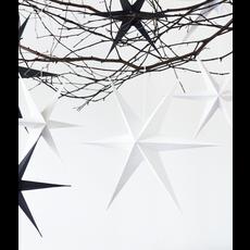 Witte sterren set/2