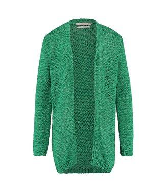 Aaiko Phillys Vis #61 Emerald Green Vest