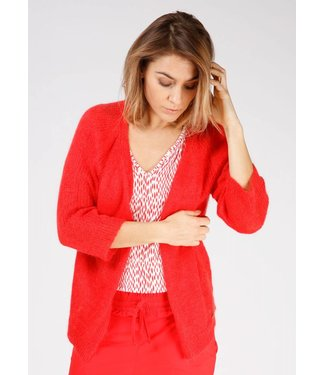Moscow SP19-52.03 Short Cardigan
