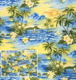 Hawai 04