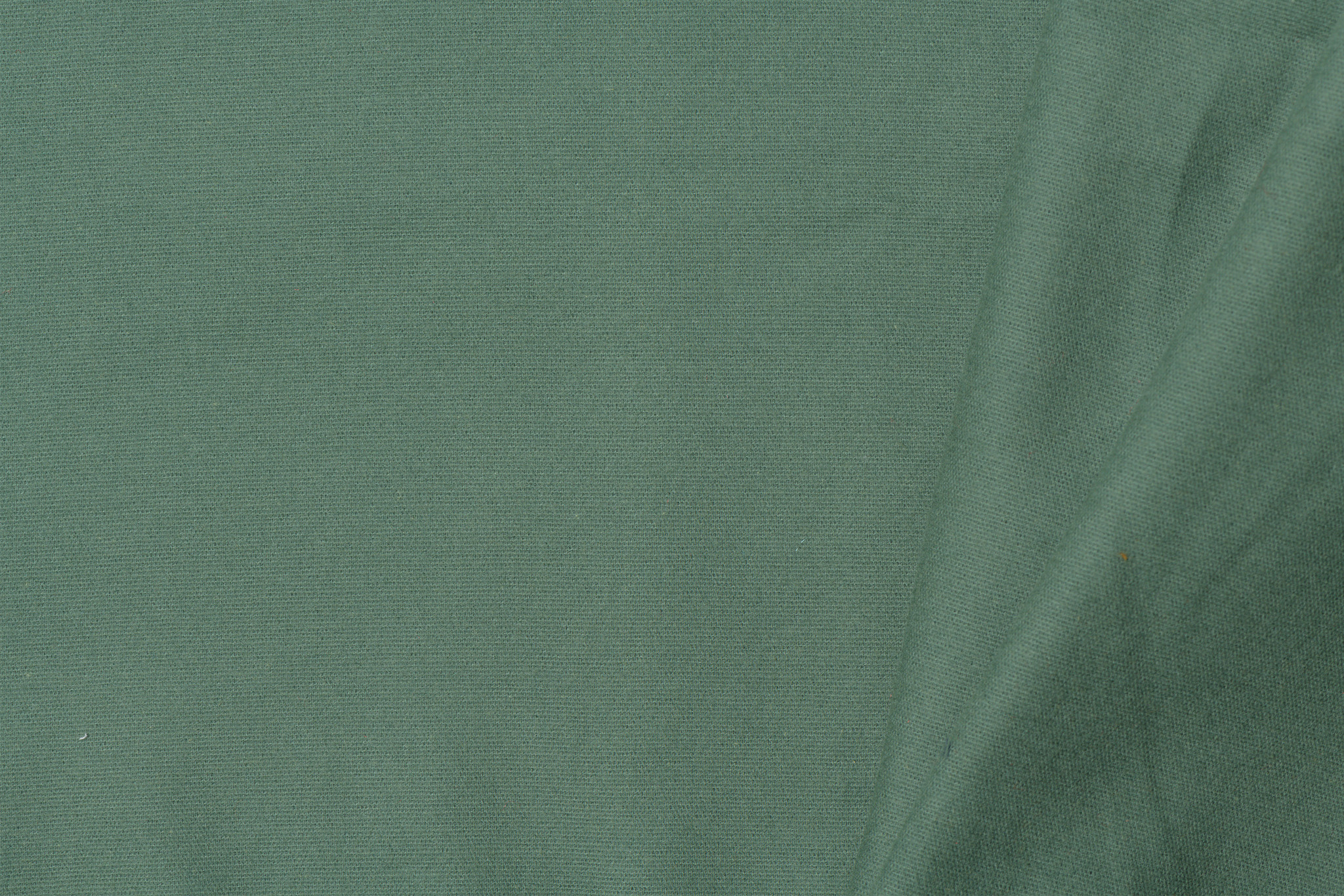by Poppy designed for you Cotton Flanel Uni / Effen Old Green