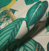 Linenlook Premium Calathea leaves