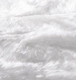 Bont korthaar wit