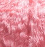 Bont korthaar roze