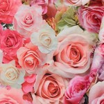 Deco Stof Roses
