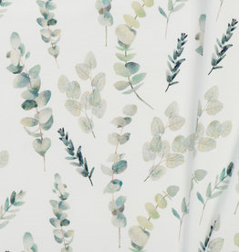 Jersey Katoen Digitale Print - Eucalyptus Plant
